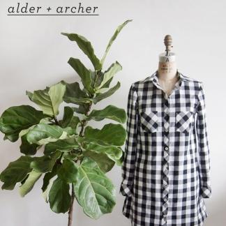 alderarcher01